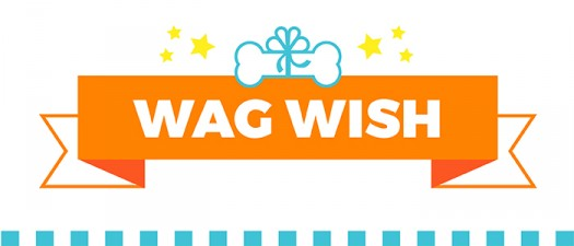 UDC-wagwish-sugarwishecard-dogtreats