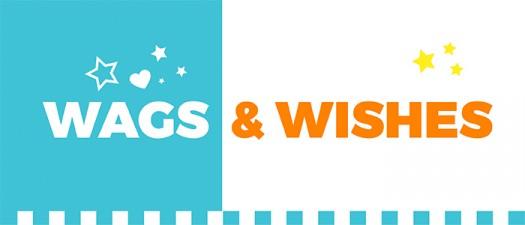 UDC-wagsandwishes-sugarwishecard-dogtreats